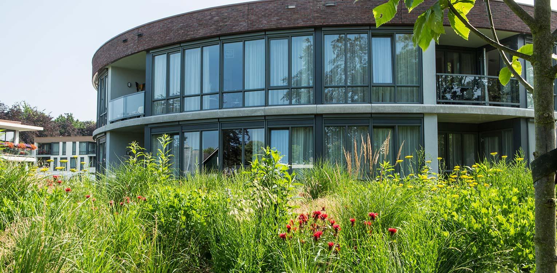 Zomerbeeld van de prairietuin Hengelo waar voor het eerst in Nederland op grote schaal prairiebeplanting werd gebruikt. Ontwerp Denkers in Tuinen Apeldoorn.