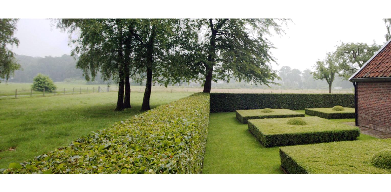strakke snoeivormen in boerderijtuin Gorssel. De tuin valt op door zijn sterke concept, eenvoudige vormentaal en mooie verbinding met het bestaande landschap - Denkers in Tuinen.
