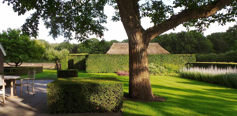 notenboom en haag structuren bij boerderijtuin Gorssel. De tuin valt op door zijn sterke concept, eenvoudige vormentaal en mooie verbinding met het bestaande landschap - Denkers in Tuinen.