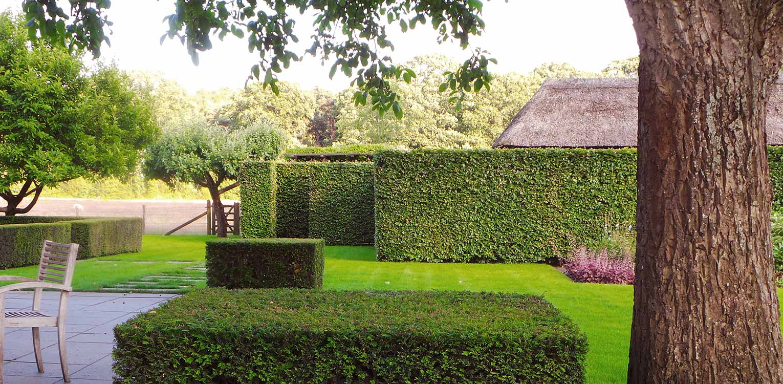 gelaagdheid hagen bij boerderijtuin Gorssel. De tuin valt op door zijn sterke concept, eenvoudige vormentaal en mooie verbinding met het bestaande landschap - Denkers in Tuinen.
