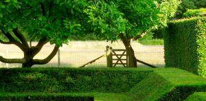 met taxus omzoomde zitkuil bij boerderijtuin Gorssel. De tuin valt op door zijn sterke concept, eenvoudige vormentaal en mooie verbinding met het bestaande landschap - Denkers in Tuinen.