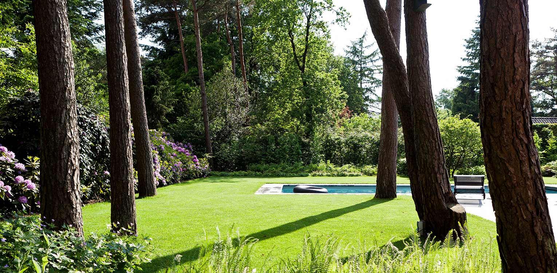 geflankeerd door rhododendrons staan vliegdennen vrij in het gras van bostuin in Ermelo. De op de kavel aanwezige bossfeer is centraal gesteld in het ontwerp met het zwembad als stijlvol vormgegeven onderdeel Denkers in Tuinen