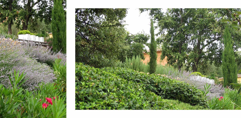 Deze villatuin Brignoles bestaat uit meerdere niveaus. Sobere beplantingskeuze om het landschap maximaal op de kavel naar binnen te halen Denkers in Tuinen.