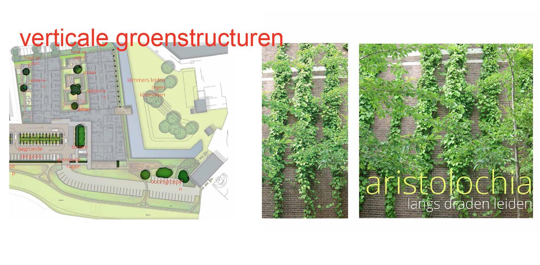 verticaal groen zorgtuin Hanepraij Gouda. Een bij het gebouw passend tuinontwerp, dat karakter aan het geheel geeft voor de specifieke doelgroep Denkers in Tuinen
