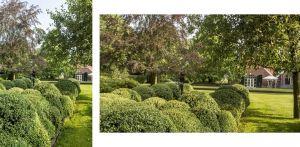 boerderijtuin Eibergen vroeg m.n. om nieuwe structuur door het opstellen van een totaalplan met veel nieuwe zichtlijnen en verbindingen naast plekken voor tuinbeelden - Denkers in Tuinen.