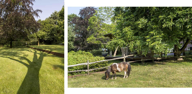 lange schaduwen tot op de cortenstalen kering en grazende pony's bij boerderijtuin Eibergen - Denkers in Tuinen.