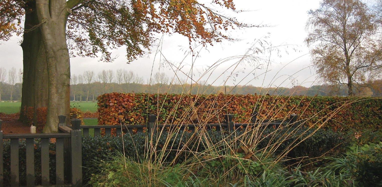 herfstbeeld border boerderijtuin Gorssel. De tuin valt op door zijn sterke concept, eenvoudige vormentaal en mooie verbinding met het bestaande landschap - Denkers in Tuinen.