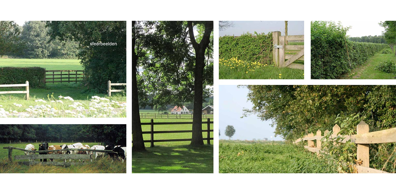 sfeerbeelden landschappelijke tuin Heerde waar ontwerp bepaald is door de openheid van het open ontginningslandschap met zijn noord-zuid relaties - Denkers in Tuinen