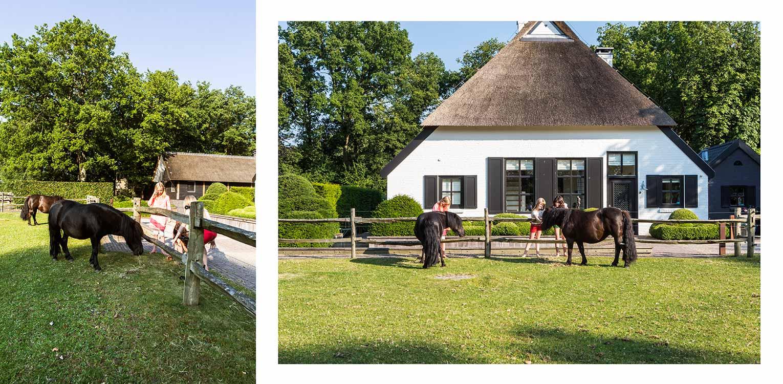 ponywei boerderijtuin Nijverdal. Er is eenheid en stijl in de aanwezige verrommeling gebracht en kunnen de pony's rondom tot aan de woning komen Denkers in Tuinen.