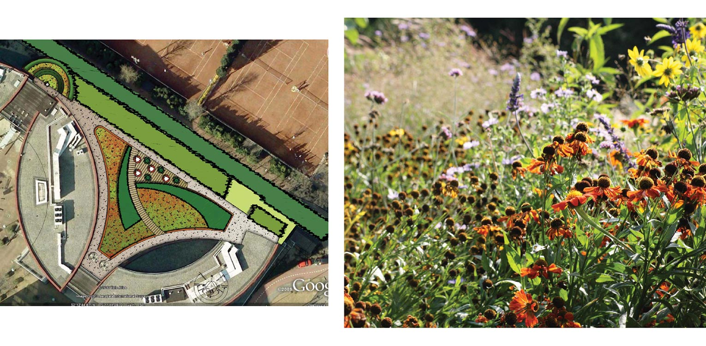 schetsontwerp daktuin Hilversum. Kijk- en gebruikstuin met een groot houten terras dat geheel door massaal toegepaste prairiebeplanting is omgeven Denkers in Tuinen.