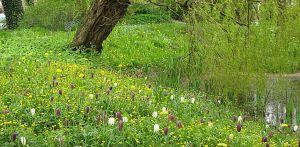 zaaimengsel landschappelijke tuin Hoevelaken Heldere opzet waar nieuwe en moderne architectuur een relatie aangaat met het 'oude' omliggende landschap Denkers in Tuinen