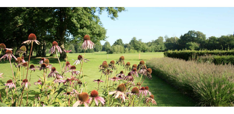 prairie- en grassenborder landschappelijke tuin Wenum Wiesel waar door het vrijzetten van de uitgegroeide houtwal prachtig zicht kwam op het achterliggend landschap Denkers in Tuinen