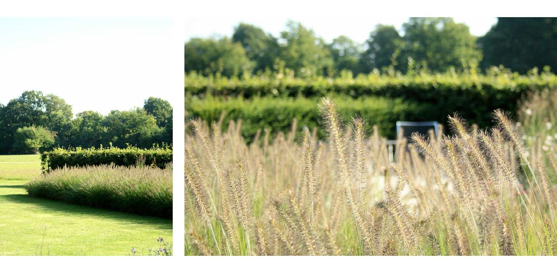 grassenborder landschappelijke tuin Wenum Wiesel waar door het vrijzetten van de uitgegroeide houtwal prachtig zicht kwam op het achterliggend landschap Denkers in Tuinen