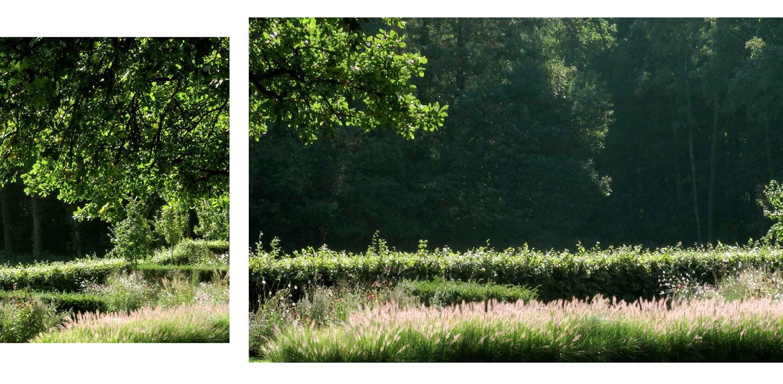 borders met grassen landschappelijke tuin Wenum Wiesel waar door het vrijzetten van de uitgegroeide houtwal prachtig zicht kwam op het achterliggend landschap Denkers in Tuinen