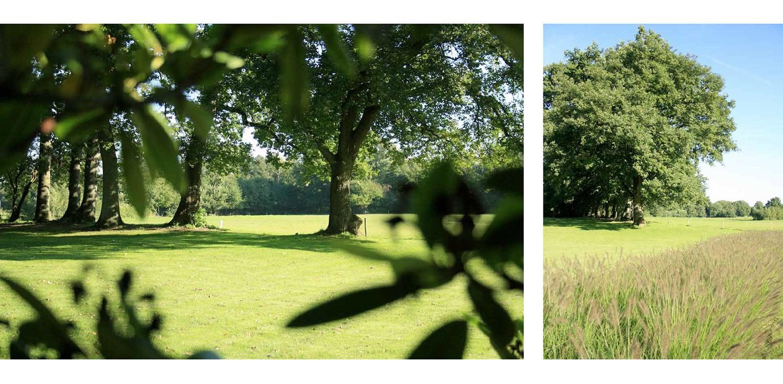 landschappelijke tuin Wenum Wiesel. Door het vrijzetten van de majestueus uitgegroeide houtwal komt deze in het plan vorstelijk naar voren Denkers in tuinen
