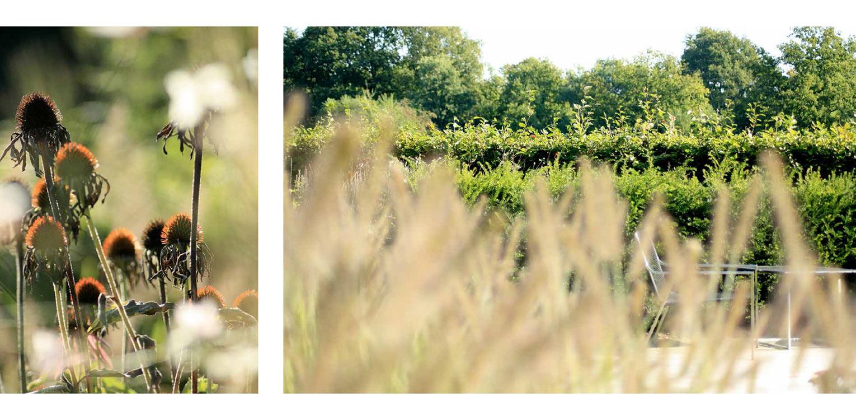 prairie beplanting landschappelijke tuin Wenum Wiesel waar door het vrijzetten van de uitgegroeide houtwal prachtig zicht kwam op het achterliggend landschap Denkers in Tuinen