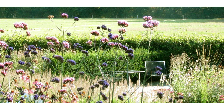 border voorlangs terras met hagen landschappelijke tuin Wenum Wiesel waar door het vrijzetten van de uitgegroeide houtwal prachtig zicht kwam op het achterliggend landschap Denkers in Tuinen