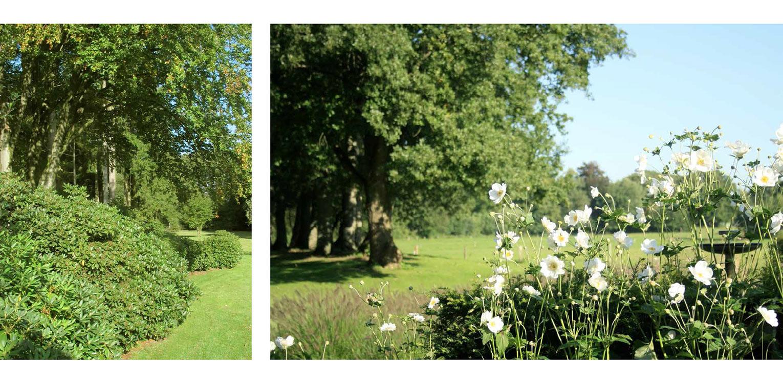 rhodo aanplant en herfstanemoon voor houtwal landschappelijke tuin Wenum Wiesel waar door het vrijzetten van de uitgegroeide houtwal prachtig zicht kwam op het achterliggend landschap Denkers in Tuinen