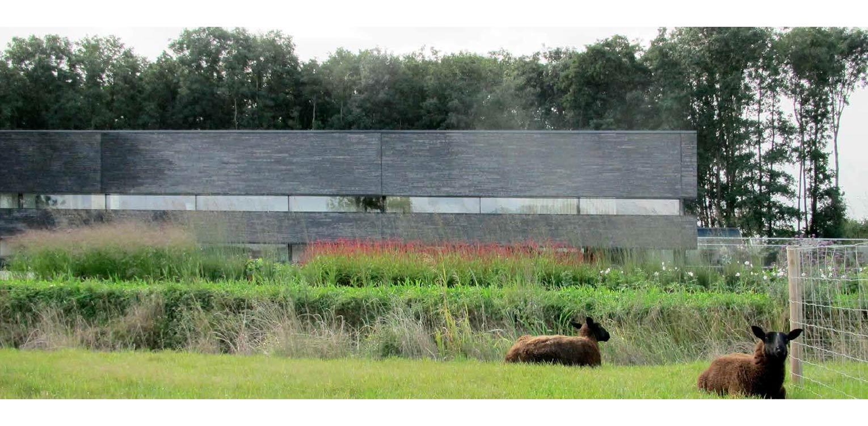 Moderne villatuin met prairieborder. Essentieel voor het ontwerp van deze tuin is de lengtebeleving. Het graslandschap wordt zelfs letterlijk onder het huis doorgetrokken!