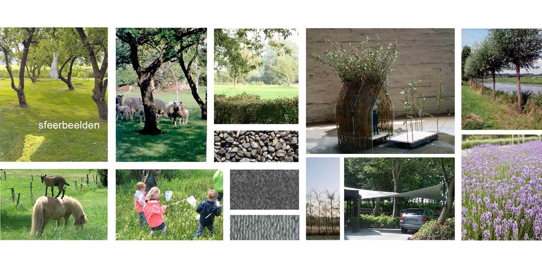 Moderne villatuin - sfeerbeelden. Essentieel voor het ontwerp van deze tuin is de lengtebeleving. Het graslandschap wordt zelfs letterlijk onder het huis doorgetrokken!
