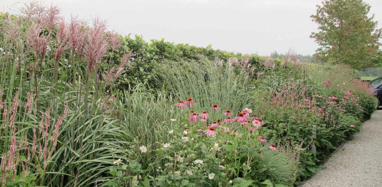 lange border grassen en vaste planten villatuin Dronten. Tuin aan de polderrand van Dronten, gekoppeld aan het omliggende polderlandschap met noodzakelijke windbeschutting - Denkers in Tuinen