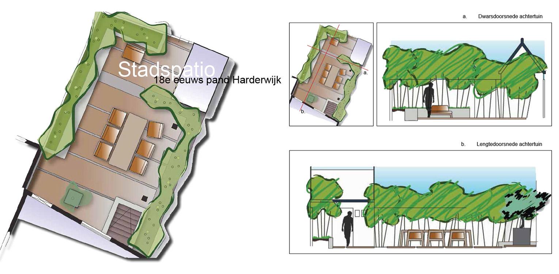 stadspatio Harderwijk waar op kleine ruimte tuin, terras wintergroene bamboe verrassend worden gecombineerd - Denkers in Tuinen