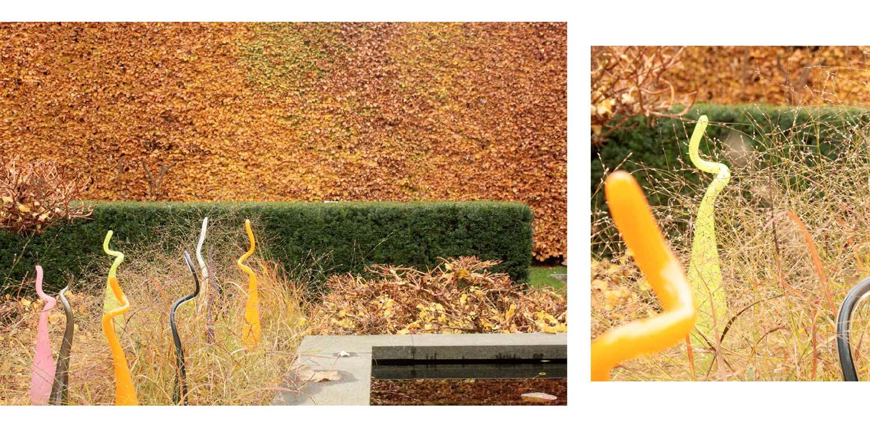 herfstkleuren in moderne stadstuin in hartje Apeldoorn. Rust en sfeer zijn hier leidend geweest met een perfecte aansluiting tussen in- en exterieur - Denkers in Tuinen