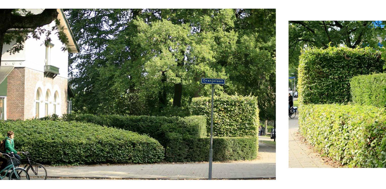 villatuin de Hermitage Apeldoorn. Uitgangspunt was om met gelaagde taxus en beukenhagen een passend geheel te creëren dat recht doet aan de rijke geschiedenis van dit pand Denkers in Tuinen.