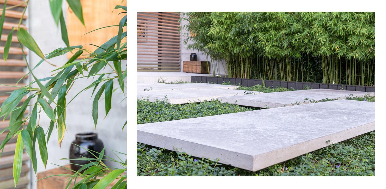 Bamboe in patiotuin Diepenveen. Het in de woning toegepaste beton is consequent in de buitenruimte doorgetrokken - mede als podium voor kunst - Denkers in Tuinen