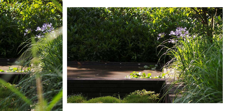 vijver in patiotuin Diepenveen. Het in de woning toegepaste beton is consequent in de buitenruimte doorgetrokken - mede als podium voor kunst - Denkers in Tuinen