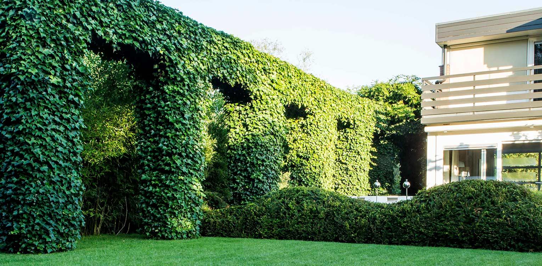 klimopbogen en taxuswolk in villatuin Naarden. In het strakke en moderne tuinontwerp zijn enkele niet alledaagse grote 'spannende' lijnen en elementen opgenomen - Denkers in tuinen.