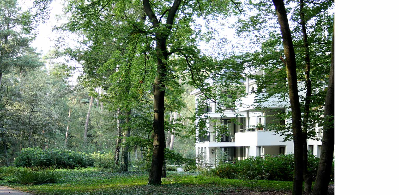 bostuin Palisium Eerbeek waar 4 appartementscomplexen minutieus op een boskavel zijn ingepast met bewust bomen en passende onderbeplanting tot vlak aan de gebouwen Denkers in Tuinen.