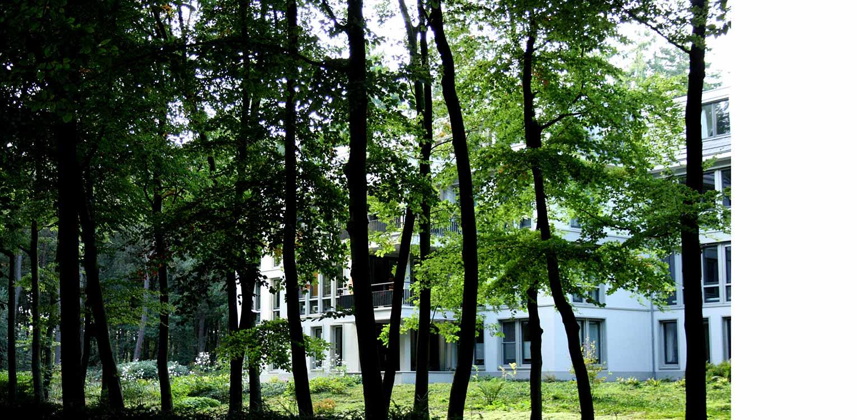 bostuin Palisium Eerbeek waar 4 appartementscomplexen minutieus op een boskavel zijn ingepast met bewust bomen tot vlak aan de gebouwen Denkers in Tuinen.