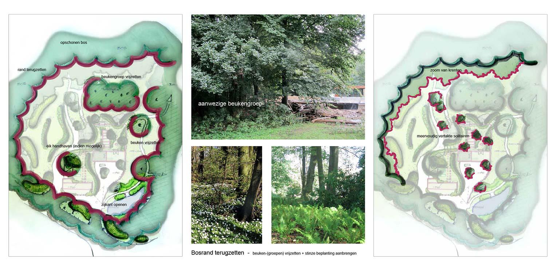 bostuin Ruurlo waar een reinwaterkelder een woonfunctie krijgt en het geheel in het omliggende bosgebied verankerd wordt met van nature voorkomende planten Denkers in Tuinen