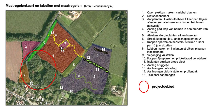 maatregelenkaart bostuin Ruurlo waar een reinwaterkelder een woonfunctie krijgt en het geheel in het omliggende bosgebied verankerd wordt met van nature voorkomende planten Denkers in Tuinen