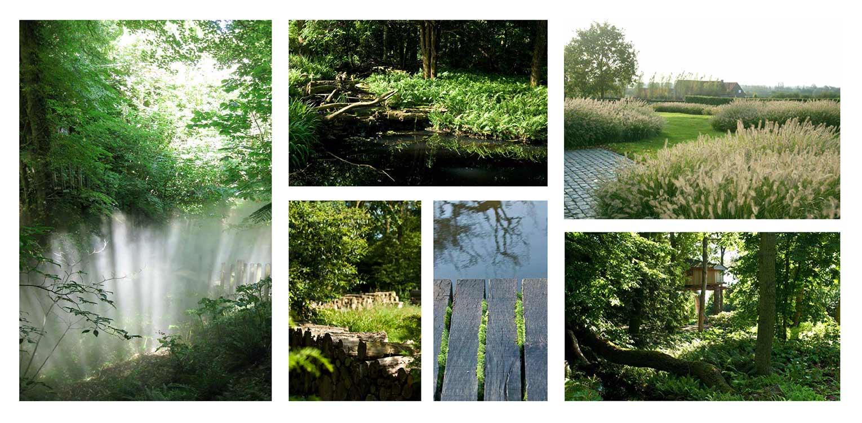 sfeerbeelden bostuin Ruurlo waar een reinwaterkelder een woonfunctie krijgt en het geheel in het omliggende bosgebied verankerd wordt met van nature voorkomende planten Denkers in Tuinen