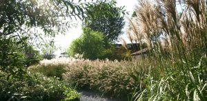 landschappelijke tuin Sloten waar de sfeer van het achterliggend natuurpark tot ver in de tuin voelbaar is naast veel bloemrijke borders diverse grassen Denkers in Tuinen