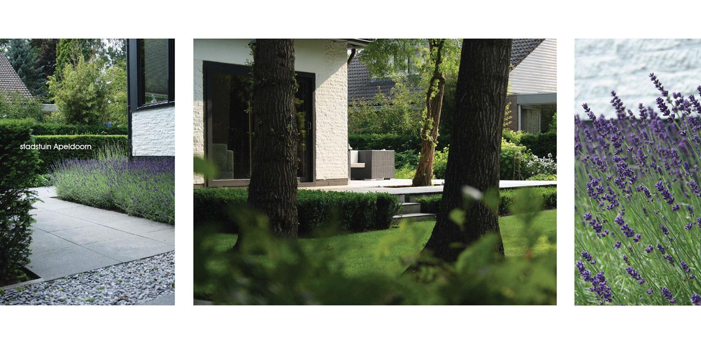 villatuin Apeldoorn met stedelijke voorzijde met groepen lavendel en achterzijde waar grote vlonderterrassen en in de vlonders opgenomen bomen de sfeer bepalen Denkers in Tuinen