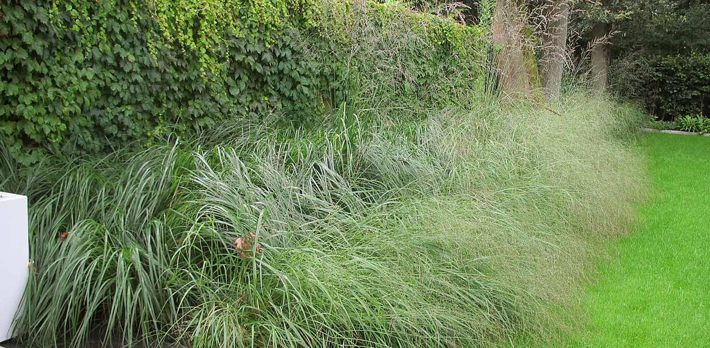 stadstuin Zeist waar minimalisme uitgangspunt is voor het tuinontwerp. Strakke lijnen en vakken groene grassen ronden af Denkers in Tuinen.