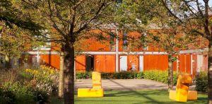 binnentuin Dennenkamp Apeldoorn waar een lange strip prairiebeplanting het tamelijk kleurloos en weinig vitale binnenterrein omgevormd heeft naar een uitbundig en kleurrijk geheel - Denkers inTuinen
