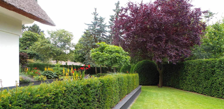 verhoogde border en verlaagd grasveld villatuin Aerdenhout waar de tuin in gelijke (bos)sfeer met de strakke renovatie van de woning is getrokken- Denkers in Tuinen