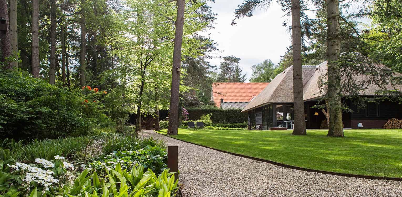vrije solitairen in het gras villatuin Apeldoorn waar nadrukkelijk aansluiting is gezocht met de direct naastgelegen bossfeer van de Hoge Veluwe - Denkers in Tuinen
