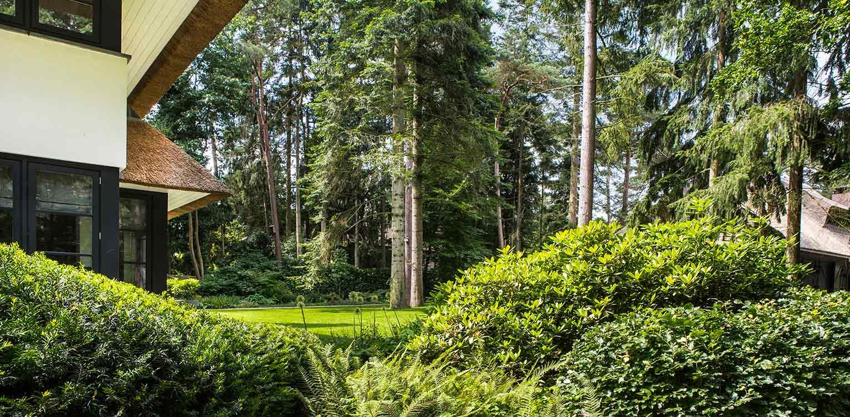 groepen rhododendron villatuin Apeldoorn waar nadrukkelijk aansluiting is gezocht met de direct naastgelegen bossfeer van de Hoge Veluwe - Denkers in Tuinen