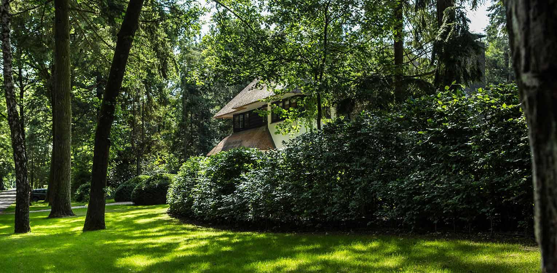 beukenhagen villatuin Apeldoorn waar nadrukkelijk aansluiting is gezocht met de direct naastgelegen bossfeer van de Hoge Veluwe - Denkers in Tuinen