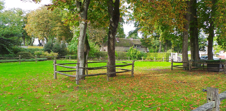 Kastanjes in boerderijtuin Nijverdal. Er is eenheid en stijl in de aanwezige verrommeling gebracht en kunnen de pony's rondom tot aan de woning komen Denkers in Tuinen.